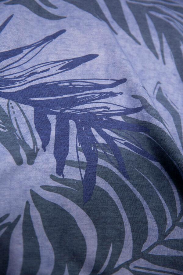 zanaga garcia garcia e bleu